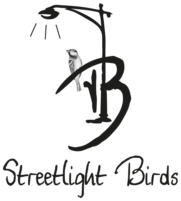 STREETLIGHT BIRDS